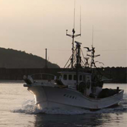 fishing041